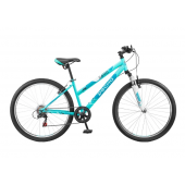 Mountain (MTB) Desna Bike 2600 V